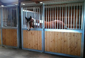 Horse Stalls | Factory Direct Sales - Nationwide Shipping